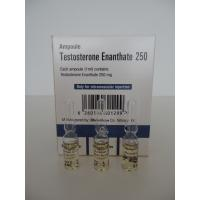 TESTOSTERONE ENANTHATE 250 (250mg/1ml.) IRAN - 50 amps
