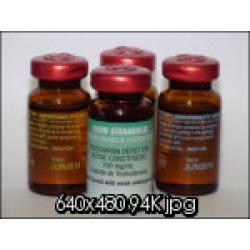 I Testosterone enanthate 250mg - 10 ml